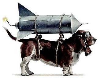 dog-rocket-science-cw-sales